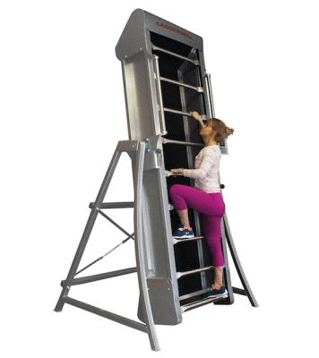 ladder-mill-sample-image